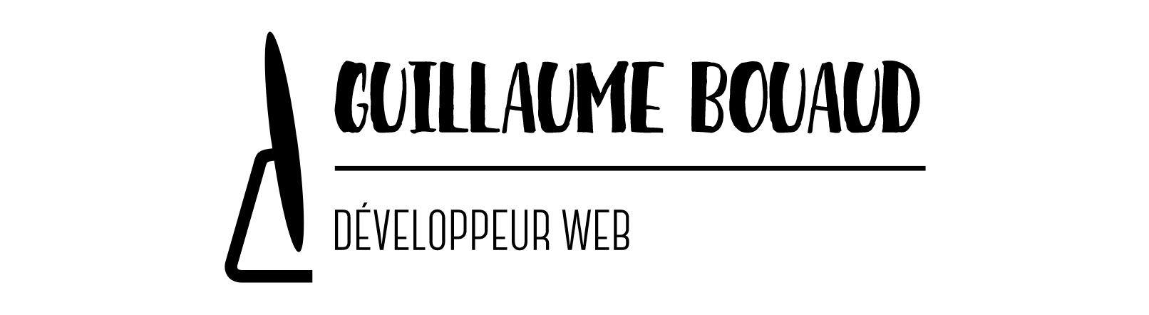 Guillaume BOUAUD - Développeur WEB